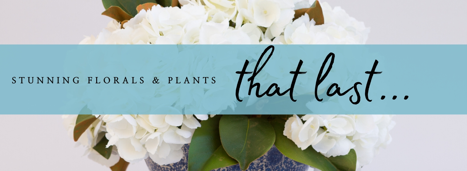 Stunning florals and plants that last...