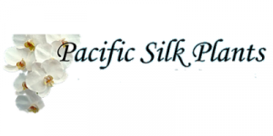 Pacific Silk Plants